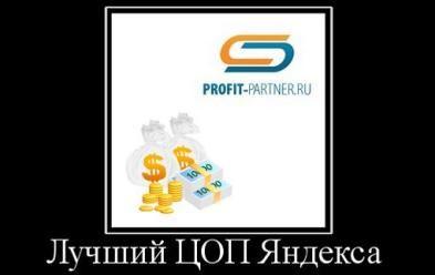 демотиватор профит партнер