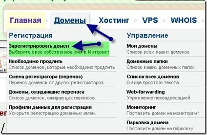 reg domena