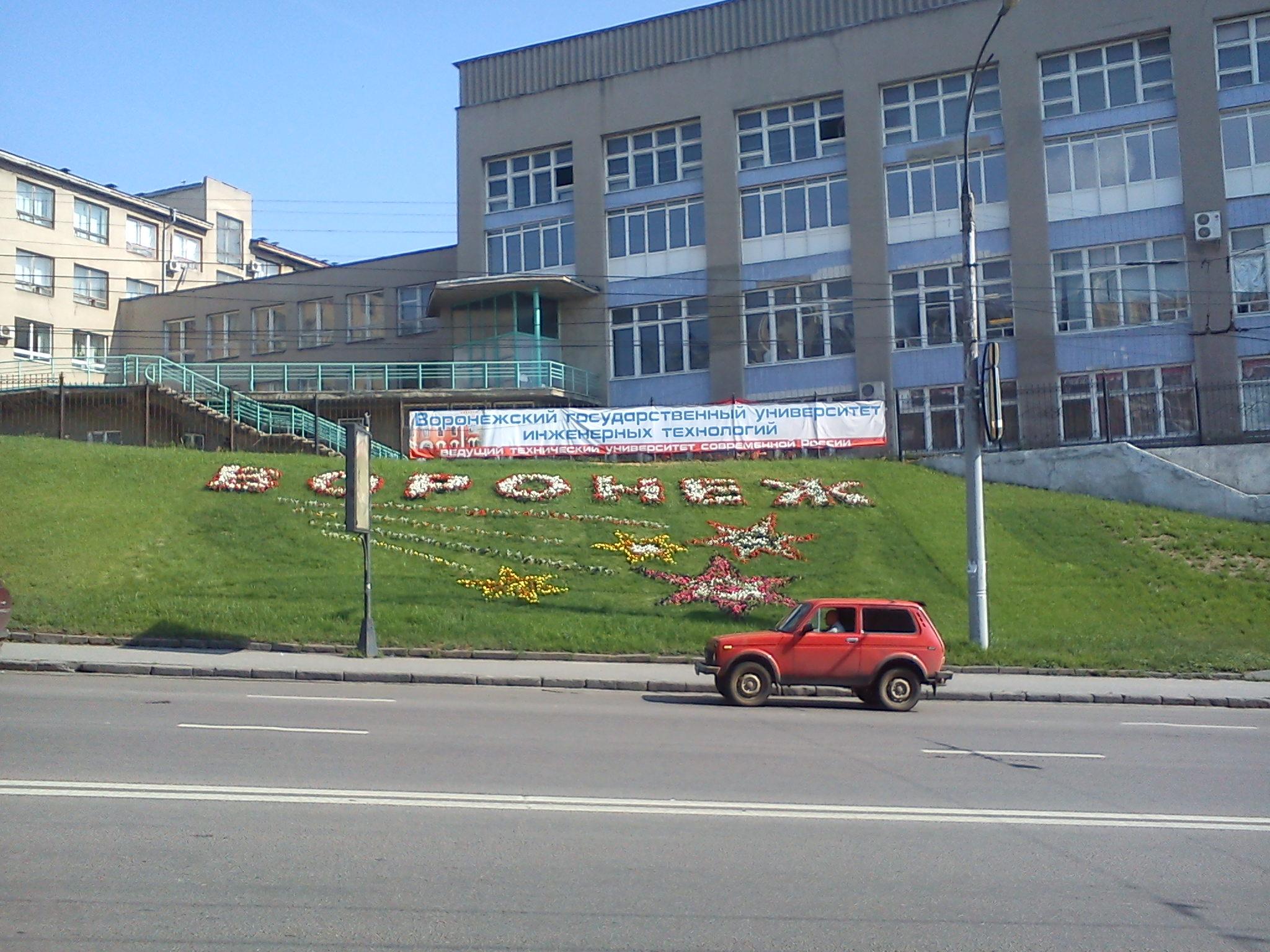 Воронеж-град